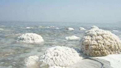 Photo of پدیده شوری آب در دشتها