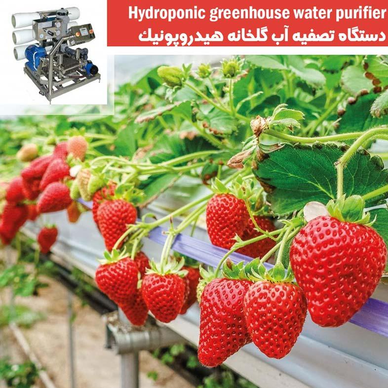 تصفیه آب گلخانه هیدروپونک